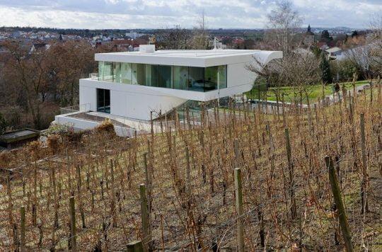La parte posterior es de un campo de viñedo, resalta el blanco uniforme aplicado a todo el conjunto de la vivienda