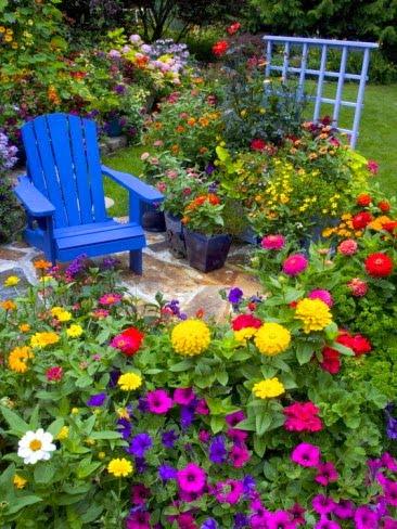 transformar tu jardín